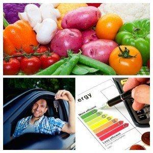 10 trin til at forbedre økonomien. Herunder fokus på madspild, transport og energi.