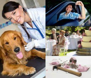Hvad det koster at have hund, at have bil, at holde bryllup osv.?